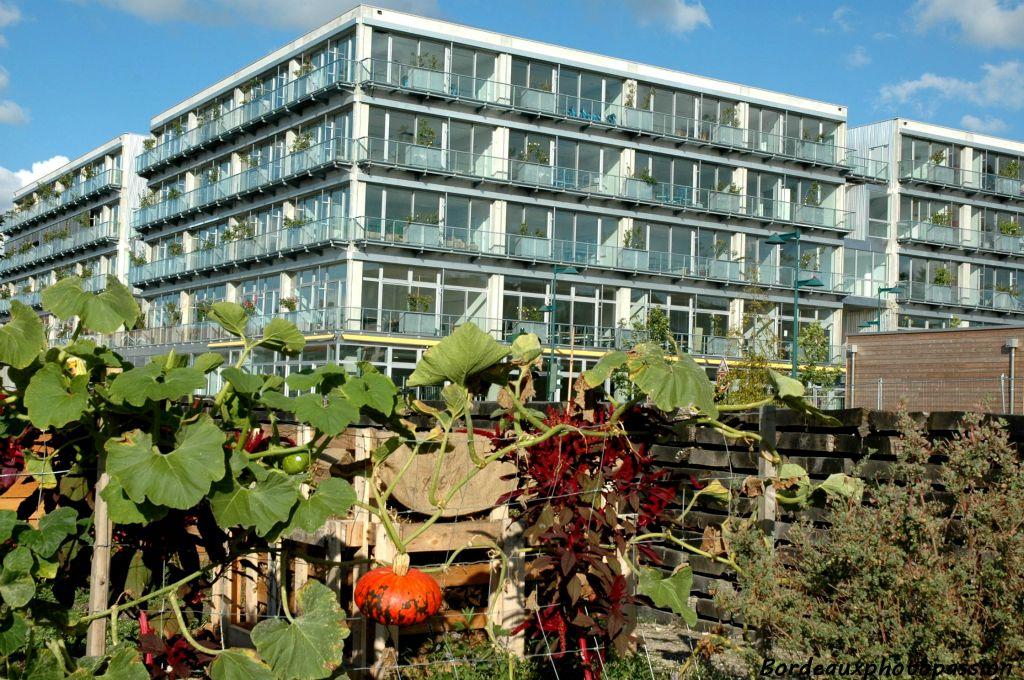 Plein les yeux au jardin botanique for Le jardin botanique bordeaux