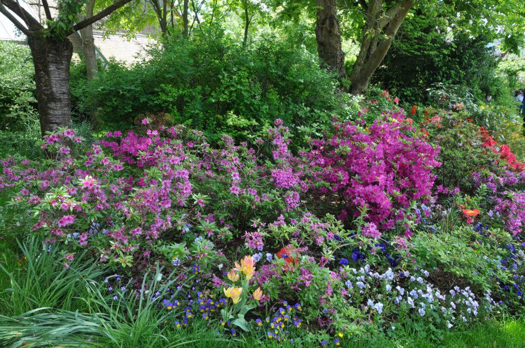 Les jardins de giverny for Le jardin de violette